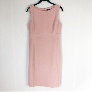 Ann Taylor Nude Steath Career Dress